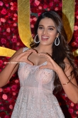 Niddhi Agarwal at Zee Cine Awards Telugu 2019 (14)