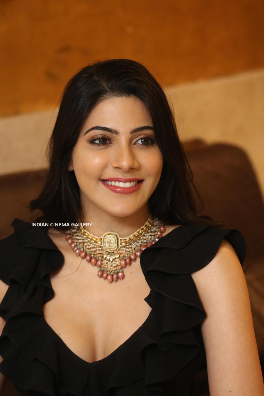 Nikki Tamboli at Thippara Meesam Pre Release Event (4)