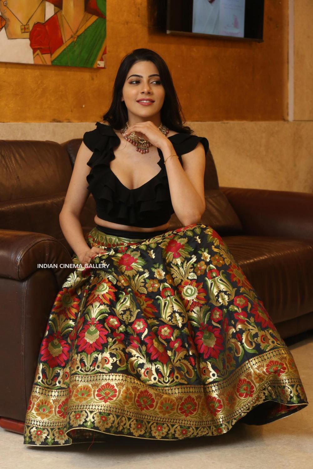 Nikki Tamboli at Thippara Meesam Pre Release Event (5)