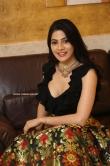 Nikki Tamboli at Thippara Meesam Pre Release Event (1)