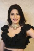 Nikki Tamboli at Thippara Meesam Pre Release Event (10)