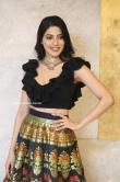 Nikki Tamboli at Thippara Meesam Pre Release Event (11)