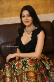 Nikki Tamboli at Thippara Meesam Pre Release Event (13)