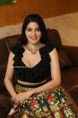 Nikki Tamboli at Thippara Meesam Pre Release Event (3)