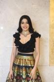 Nikki Tamboli at Thippara Meesam Pre Release Event (9)