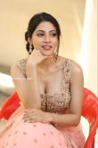 Nikki Tamboli at Thipparaa Meesam Press Meet Photos (13)