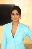 Payal Rajput at RDX Love Movie Pre Release Event (3)