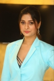 Payal Rajput at RDX Love Movie Pre Release Event (8)