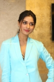 Payal Rajput at RDX Love Movie Pre Release Event (9)