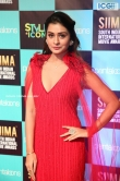 Payal Rajput at SIIMA Awards 2019 (10)