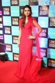 Payal Rajput at SIIMA Awards 2019 (5)