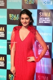 Payal Rajput at SIIMA Awards 2019 (6)