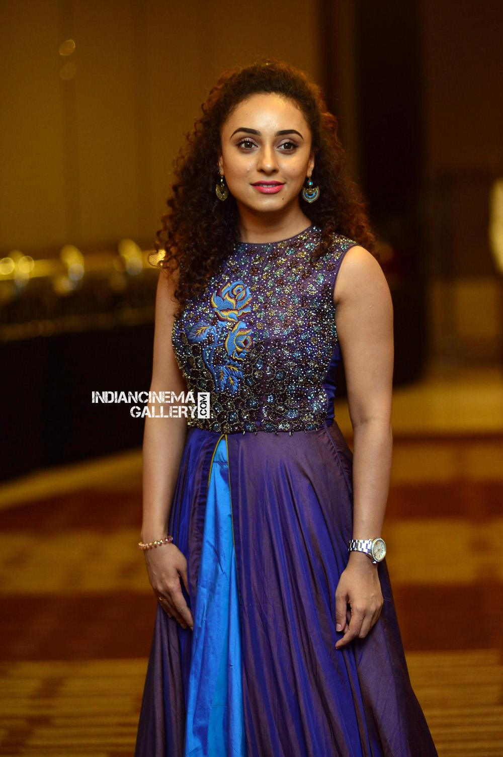 Pearle Maaney at Neeraj Madhav Reception (2)