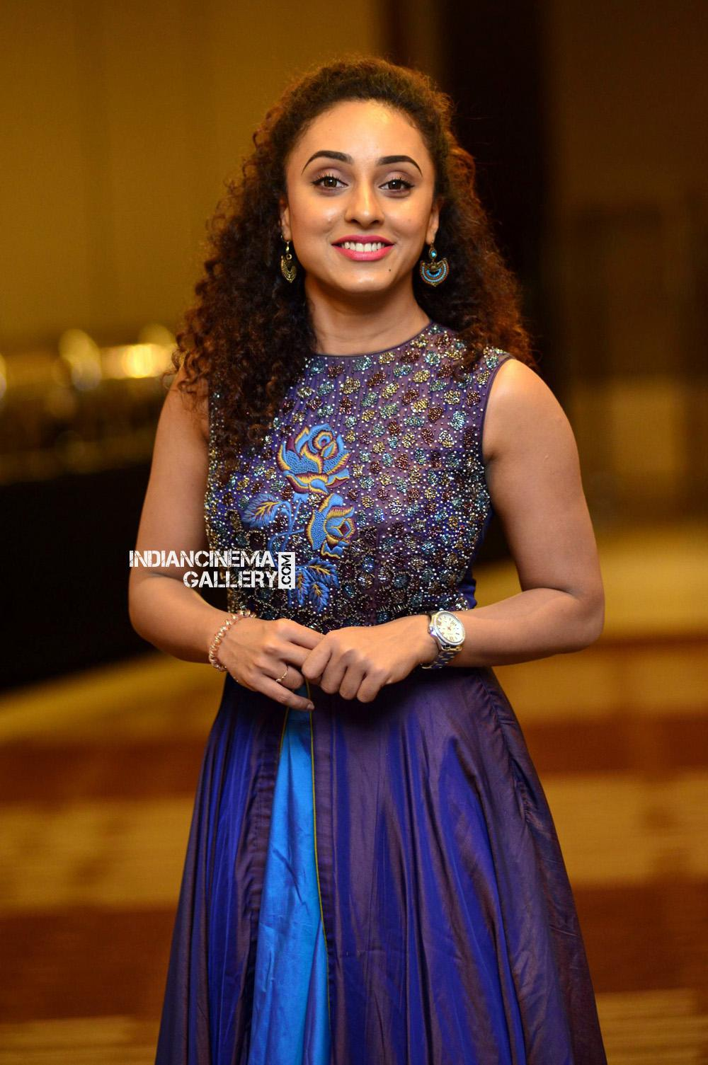 Pearle Maaney at Neeraj Madhav Reception (5)