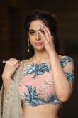 Actress Perlene Bhesania photos (28)