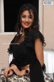 Pooja Solanki at edaina jaragochu movie Pre Release event (24)