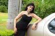 Preeti Sharma stills (1)