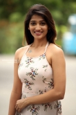 Priya Vadlamani at premaku raincheck teaser launch (14)