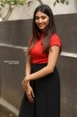 priya vadlamani in skirt n top stills (4)