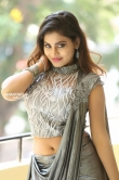 priya augustin photos in sareee (15)