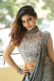 priya augustin photos in sareee (17)