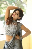 priya augustin photos in sareee (18)