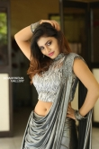 priya augustin photos in sareee (22)