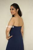 Radhika Mehrotra in blue dress stills (10)