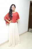 Rashmika Mandanna stills (13)