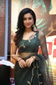 Riya Suman at Andarivaadu Movie Pre Release (10)