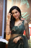 Riya Suman at Andarivaadu Movie Pre Release (11)