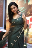 Riya Suman at Andarivaadu Movie Pre Release (14)