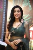 Riya Suman at Andarivaadu Movie Pre Release (15)