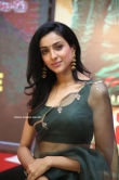 Riya Suman at Andarivaadu Movie Pre Release (6)