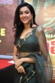 Riya Suman at Andarivaadu Movie Pre Release (7)