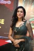 Riya Suman at Andarivaadu Movie Pre Release (9)