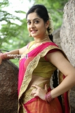 Ronica Singh Stills (14)