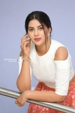 Actress Sahar Afsha Stills (23)