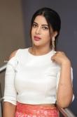 Actress Sahar Afsha Stills (26)