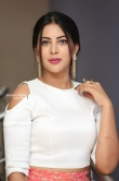 Actress Sahar Afsha Stills (28)