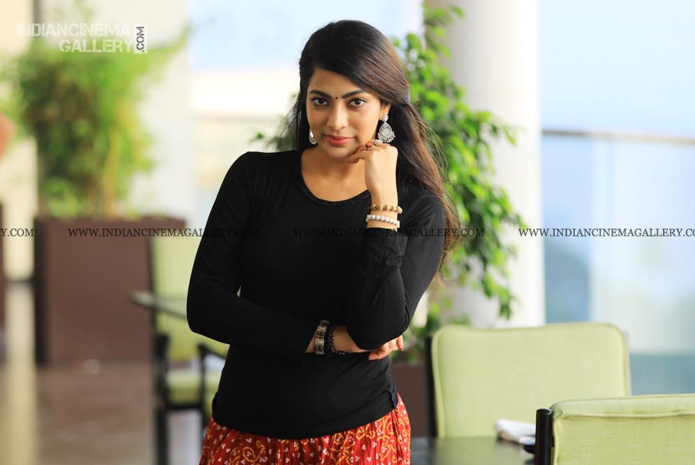 Sai Priya Deva at ente ummante peru success meet (27)