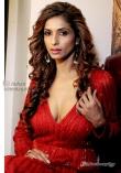 Sandhya Shetty (3)