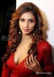 Sandhya Shetty (4)