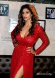 Sandhya Shetty (7)