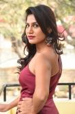 Satvika Jay in red gown stills (11)