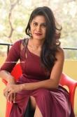 Satvika Jay in red gown stills (17)