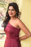 Satvika Jay in red gown stills (7)
