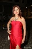 Sejal Mandavia at Filmfare Awards 2017 (21)