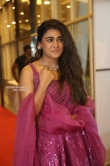 shalini panday at 118 pre release event (13)