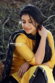 Shruthi Ramachandran in Chanakya Thanthram movie (16)